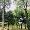 公園、メガネ、プール。東京で過ごすお盆休み。