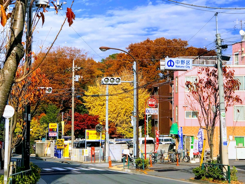 Autumn leaves in nakano
