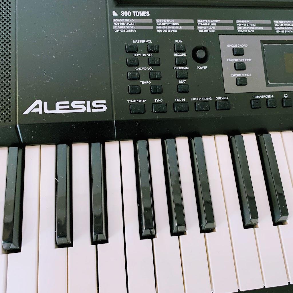 Alesis keyboard 1